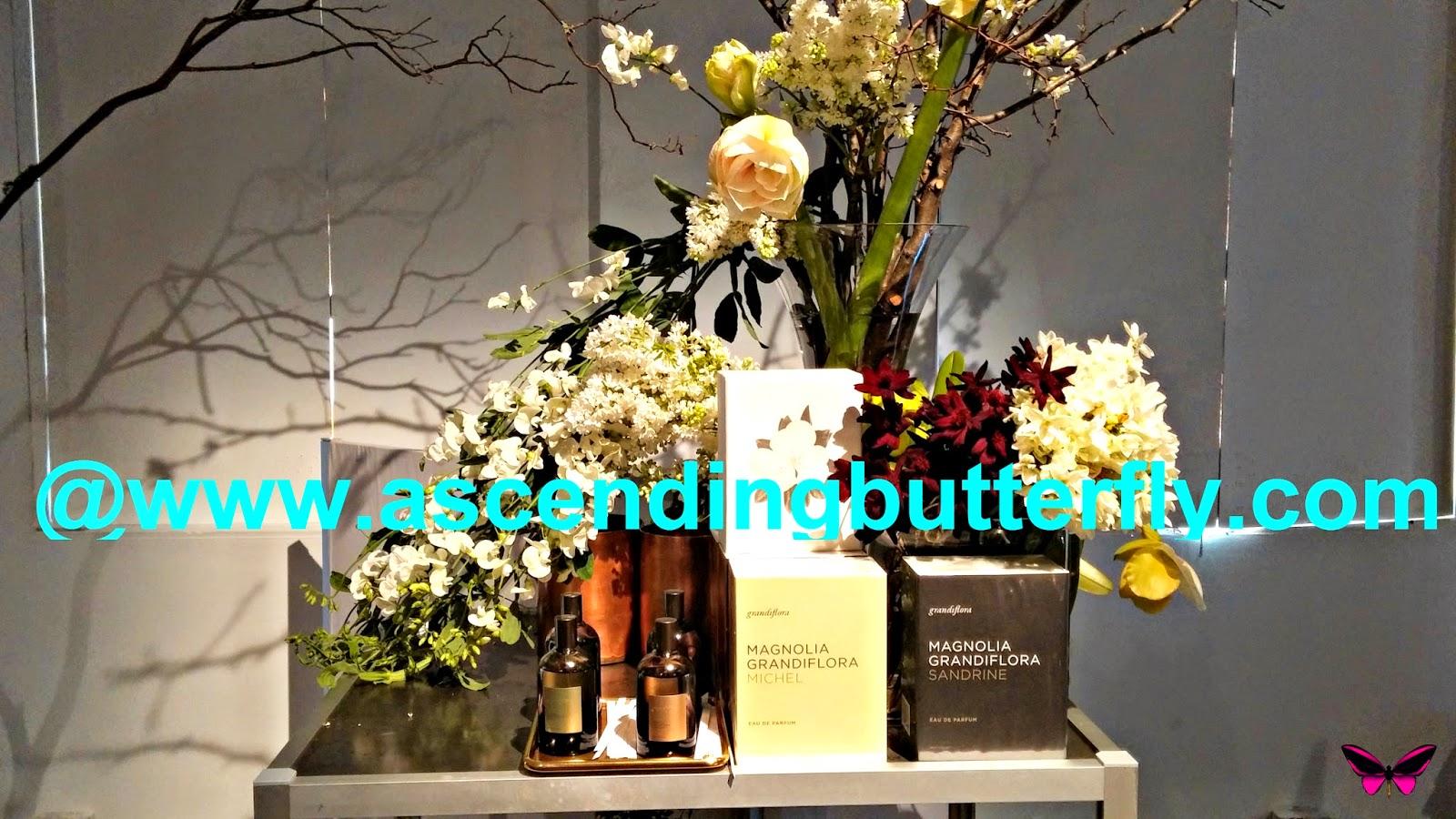 Grandiflora, Magnolia Grandiflora Sandrine, Magnolia Grandiflora Sandrine, Magnolia Flower, Grandiflora, Fragrances, Scents, Perfumes