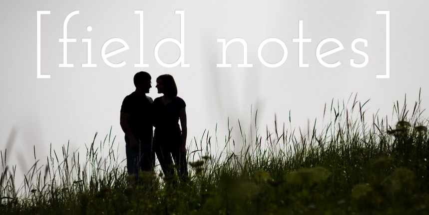 [field notes]