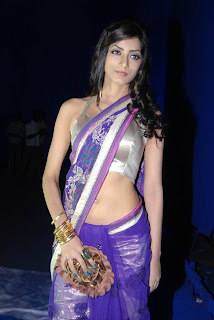 Ruby Parihar in Violet Saree and Silver Sleeveless Blouse