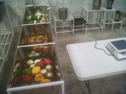 Fábrica Instalada en Mexico