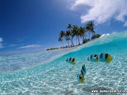 bunaken/on/my/amazing/island/and/the/best/sport/for/diving/in/the/world/travelling/tourist/adventure/indonesia