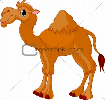 Animated Camel Pictures http://afunnyanimal.blogspot.com/2011/08/funny-camel-cartoon.html