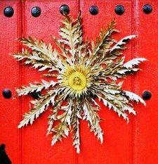 Eguzkilore, la flor protectora de la nación vasca