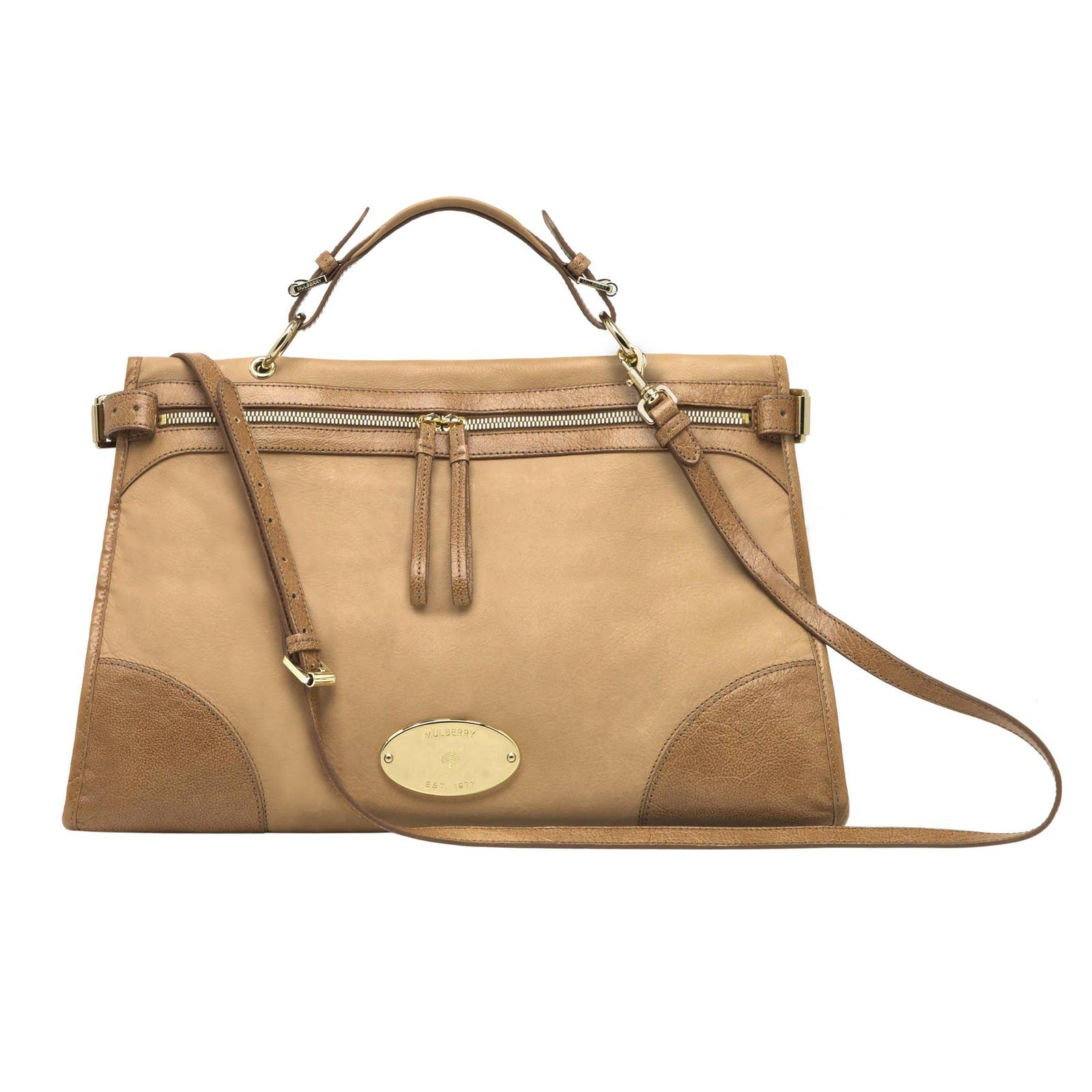 http://2.bp.blogspot.com/-EDunr0fTtyg/T_uC0vk2wkI/AAAAAAAAEjU/9VNN-5xzswE/s1600/luxury-bag.jpg