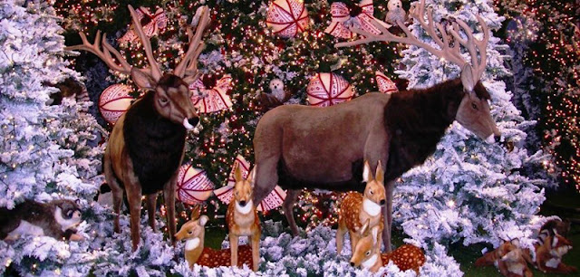 shopping Árvore de Natal de Jujuba!