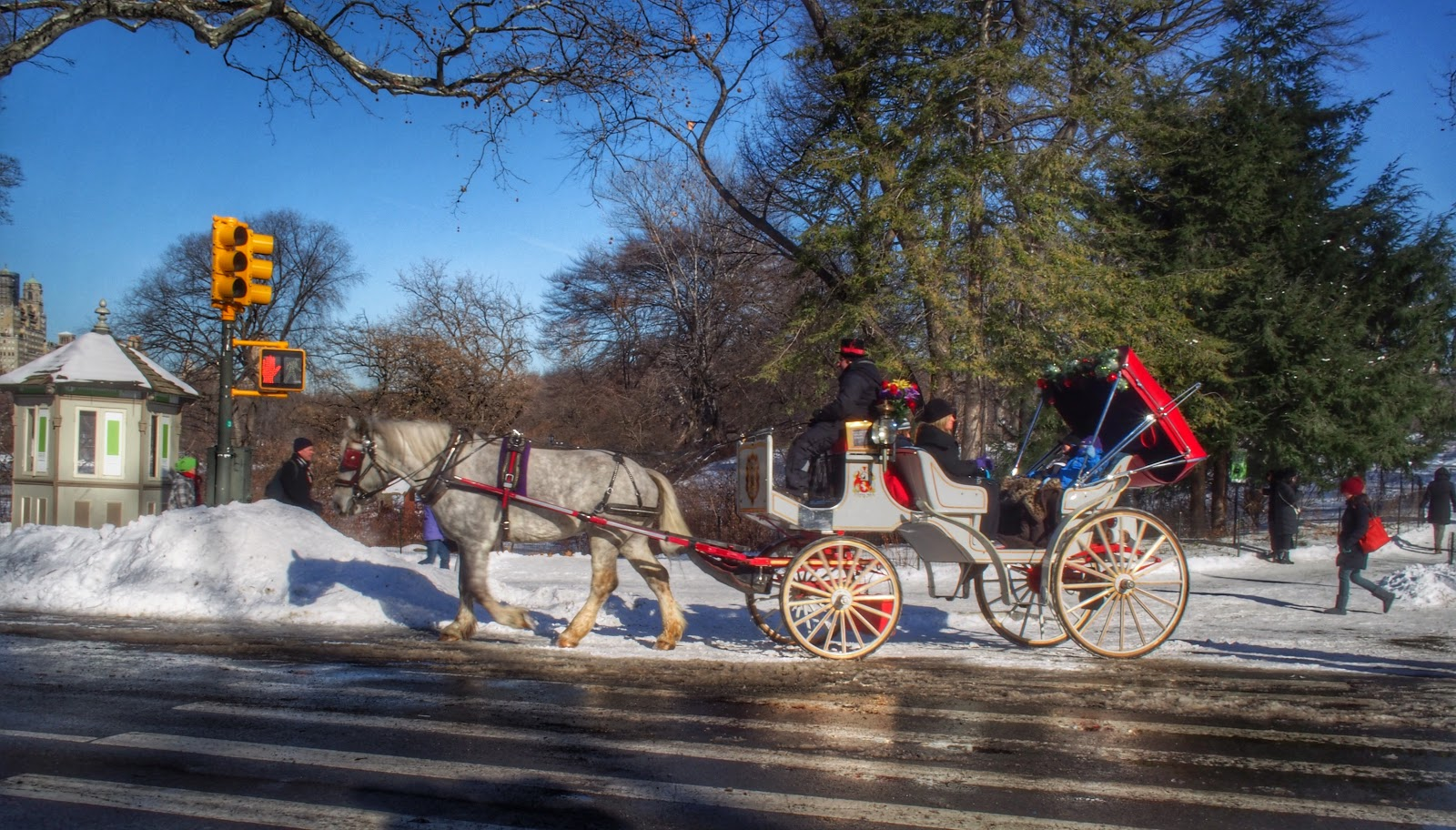 The Horses of Central Park #Hercules #Snow #snowstorm NYC 2013