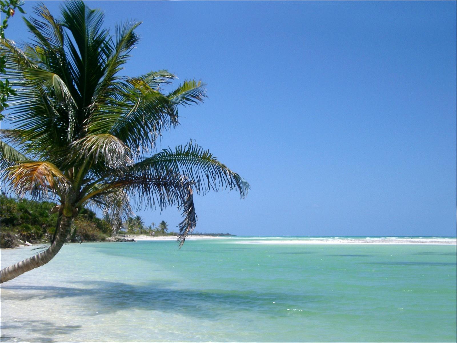 http://2.bp.blogspot.com/-EEC1-27KU6s/TmL801PELzI/AAAAAAAADgY/uFtp9T6gE6A/s1600/Beach+wallpapers1.jpg