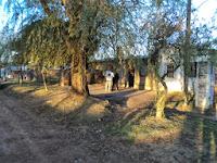 Rivadavia: Trabajo territorial en el barrio Juan Domingo Perón