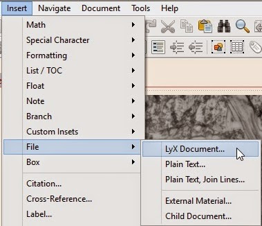 lyx document classes thesis