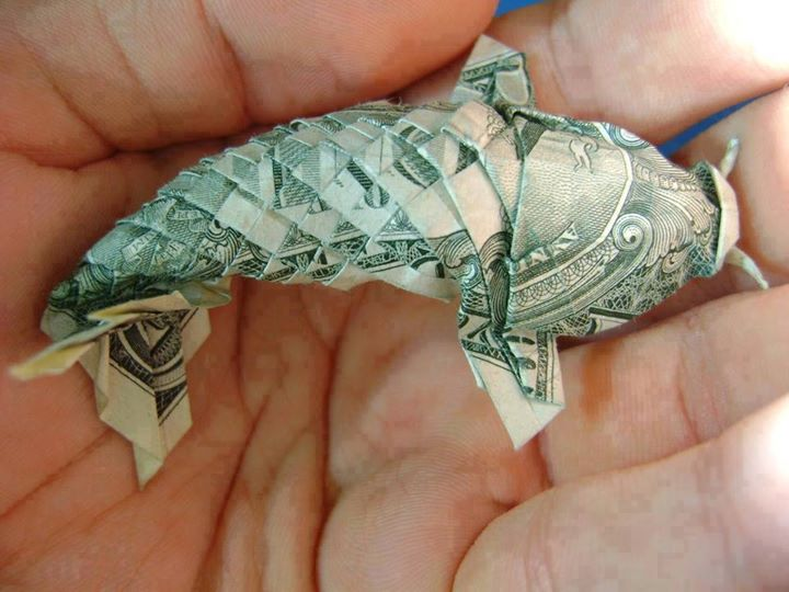 Origami Dollar bentuk ikan koi