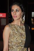 Amrya dastur glamorous photos-thumbnail-20
