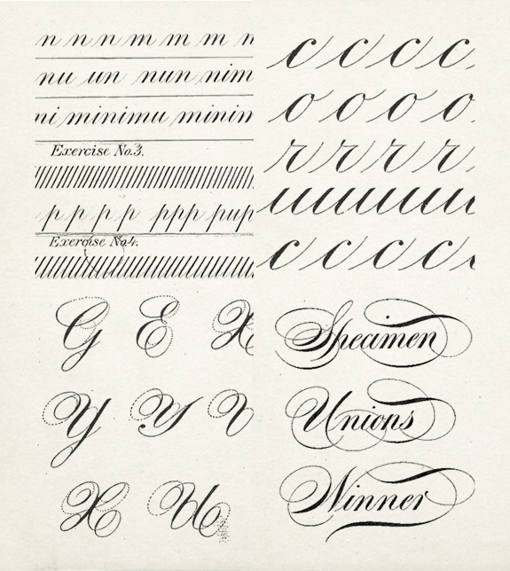 Besotted blog 20 calligraphy alphabet specimens Where to learn calligraphy