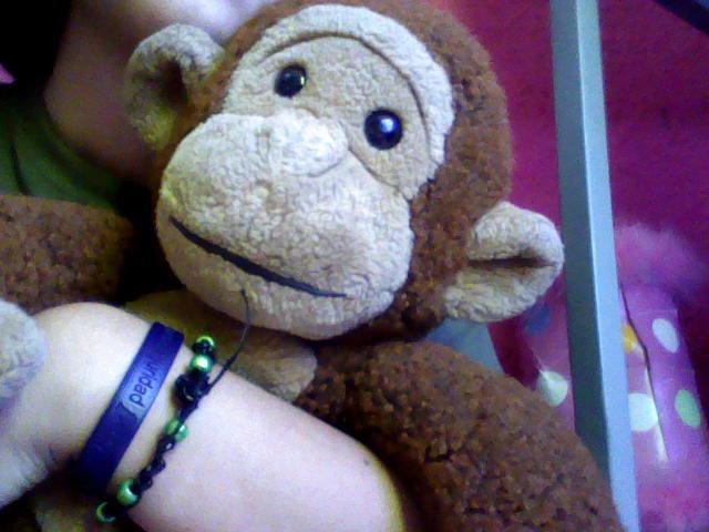 Monkey *-*