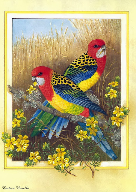 http://www.funmag.org/pictures-mag/art-gallery/beautiful-birds-paintaings/