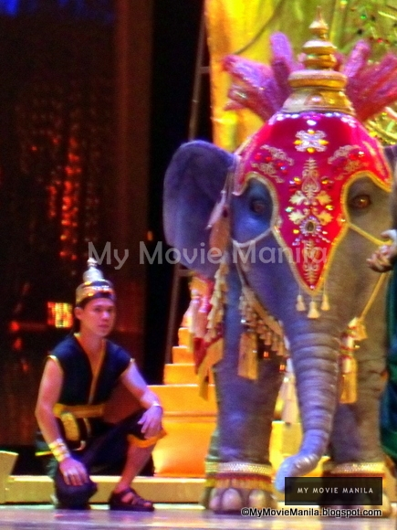 Elephant on stage