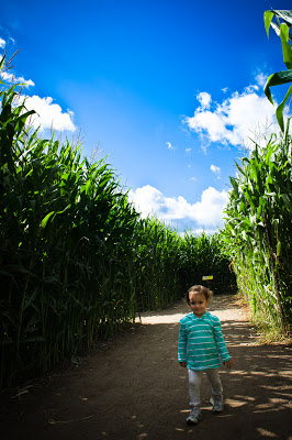 underwood family farms corn maze