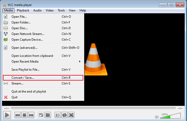 Media Player Download Sex