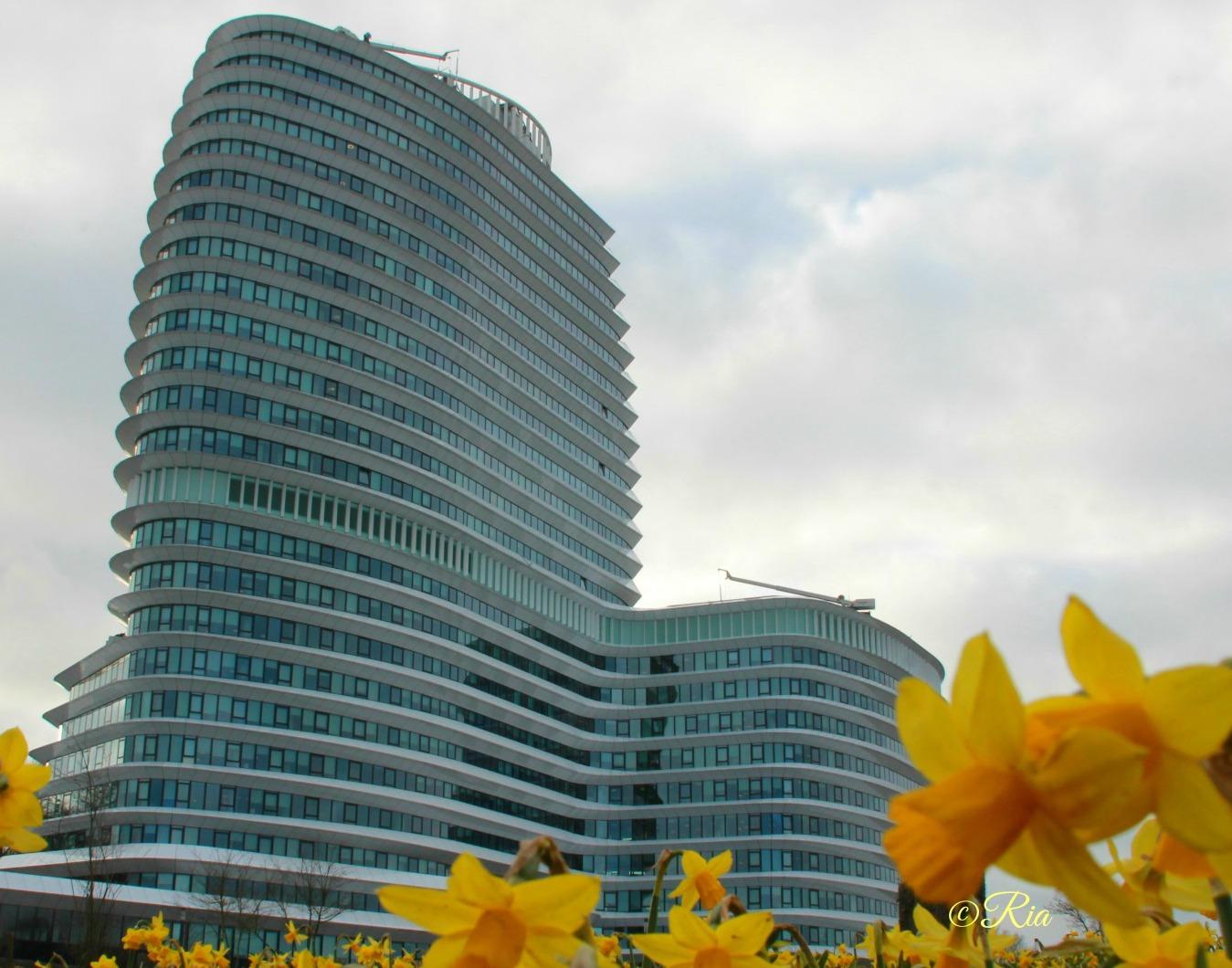 Dit nieuwe gebouw van DUO en de Belastingdienst werd vanwege zijn vorm al snel het Cruise ship genoemd.