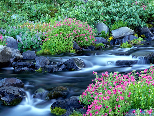 3D river nature wallpaper
