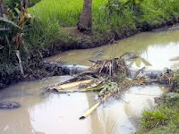 Buang Sampah di Sungai Kena Didenda