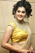 Taapsee Pannu Photos Tapsee latest stills-thumbnail-44