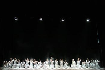Il teatro della verità di Festina Lente su Parma Repubblica