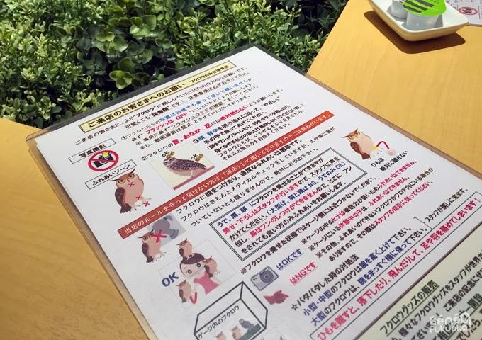Café à hiboux, Fukuoka