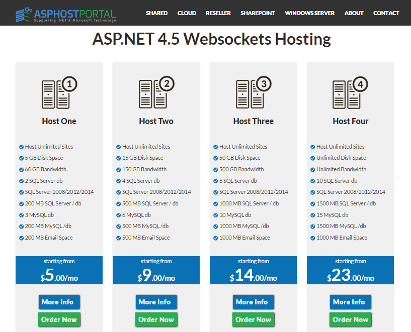 Best ASP.NET Hosting for ASP.NET Websocket