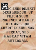 Want to display your favorite bible verse in Latin on your blog?