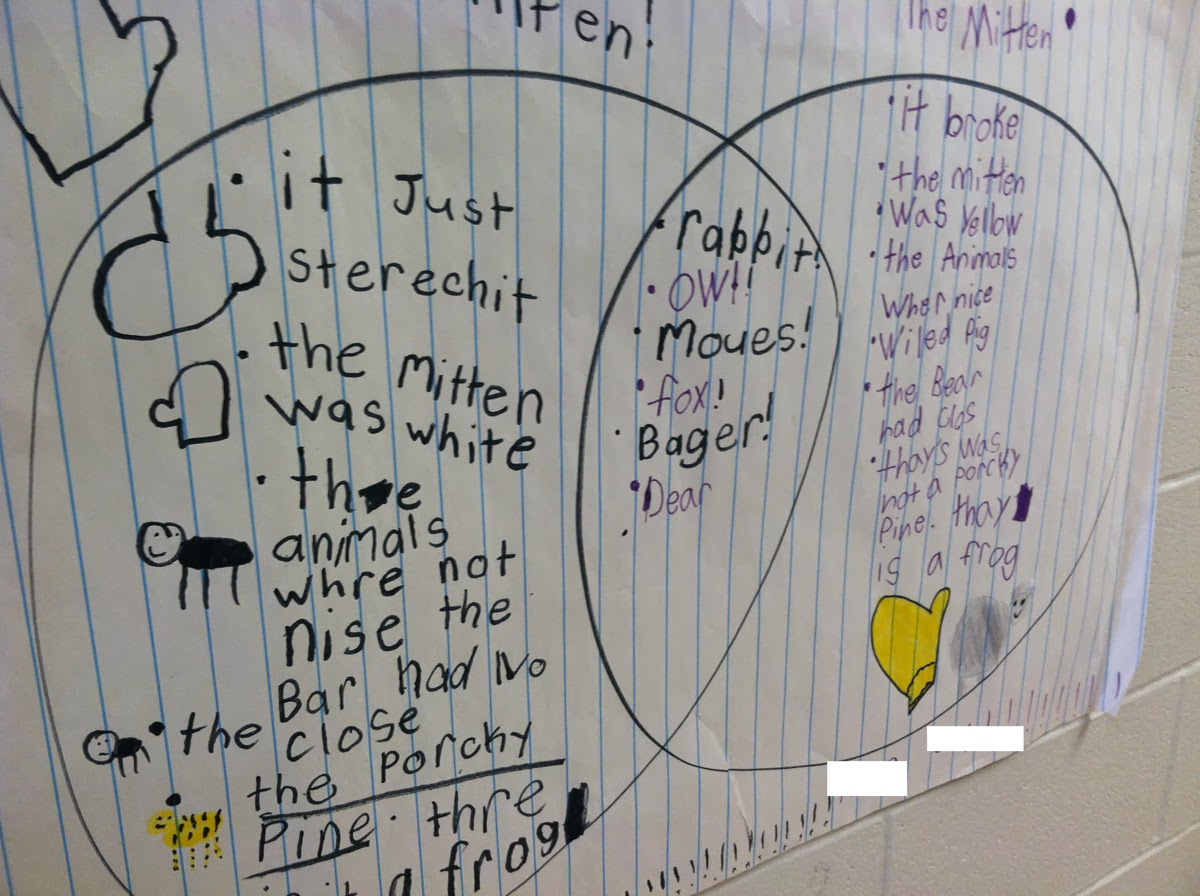 The mitten venn diagram the neat and tidy classroom after the reading students worked together in small groups to create venn diagrams comparing and contrasting these two books ccuart Images