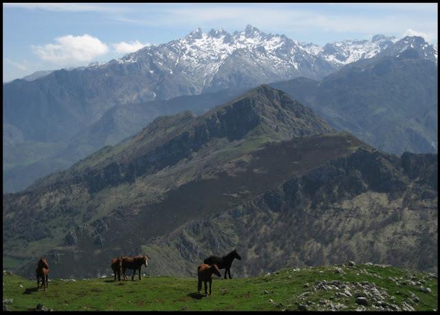 Pico Carria desde el Pierzu, al fondo los Picos de Europa