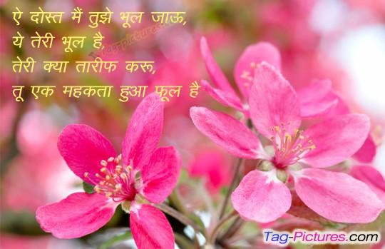 on Dosti Shayari Dosti Hindi Bewafa in Punjabi in English in Urdu ...
