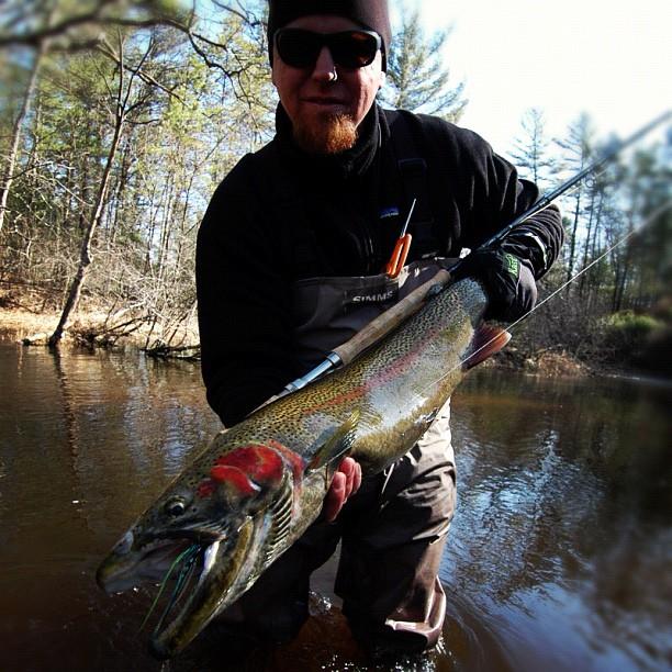 The fiberglass manifesto gear review scandi short versitip for Steelhead fishing gear