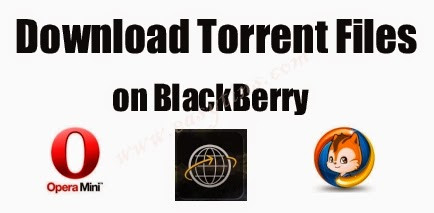 Download Torrent Files