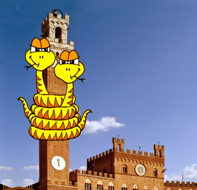 Siena: groviglio armonioso