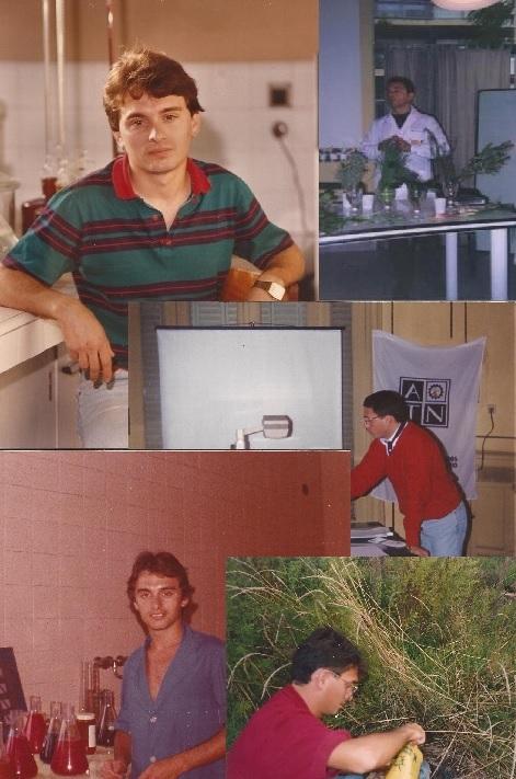 desde 1976 hasta hoy