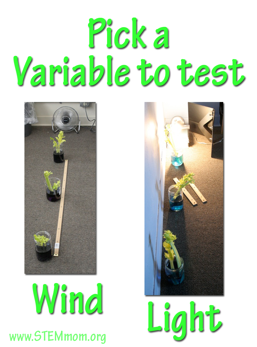 variable test