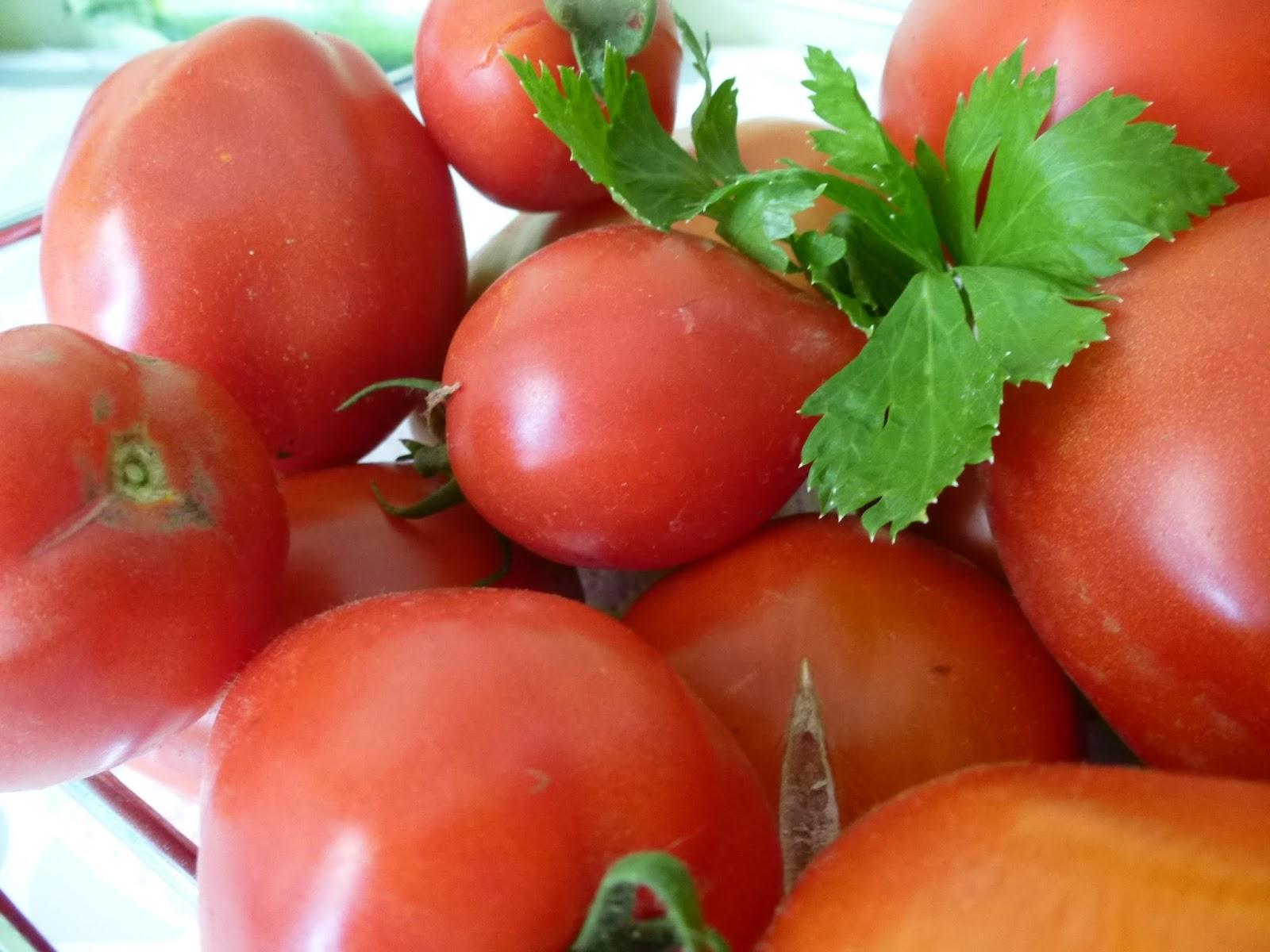 Arizonami sauce tomate maison - Que faire avec des tomates du jardin ...