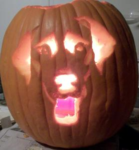 How to Carve a Pumpkin that Looks Just Like Your Dog - Pets Cute ...