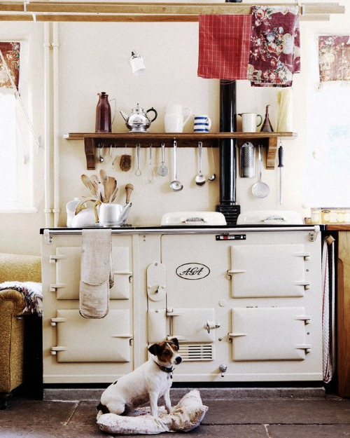 English Country Kitchen With Aga Dog Content In A Cottage