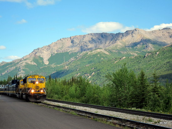 Heres Another One From Our Trip To Alaska Last Summer This Is The Train Coming In Denali National Park My Husband Caught Shot