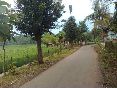 Siberuk desa yang maju