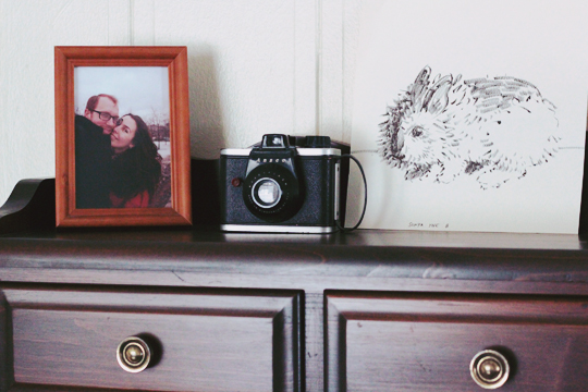 vintage camera and bunny portrait 