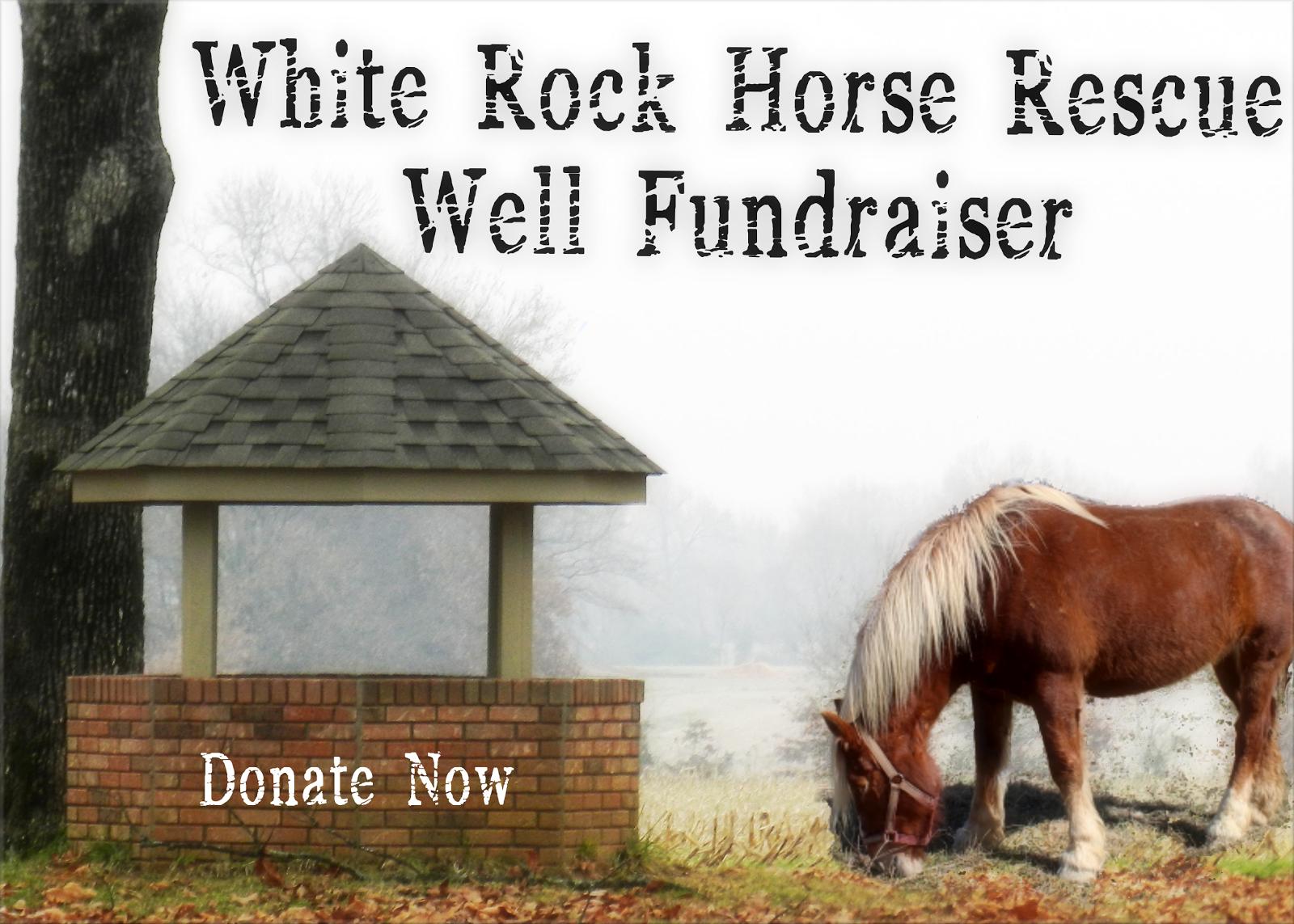 Well Fundraiser