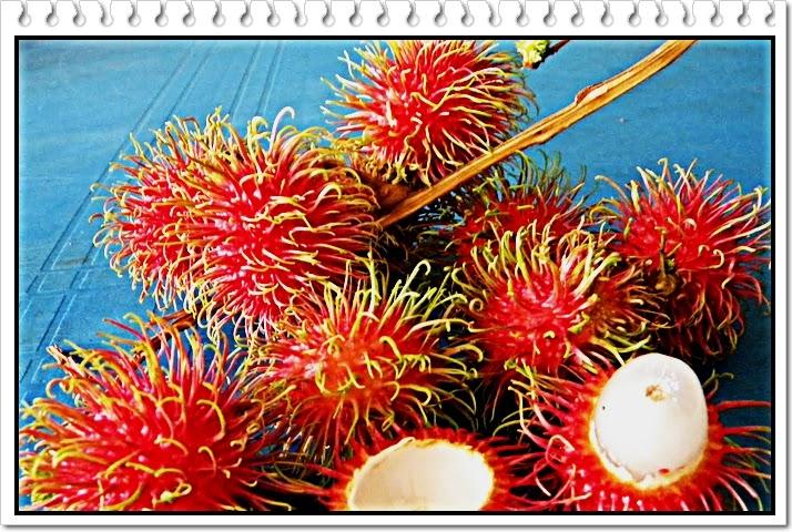 manfaat buah rambutan
