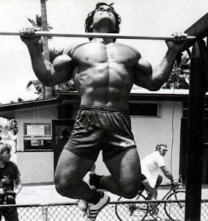 Franco Columbu doing pull ups compound exercises