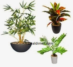 Fourwalls Bonsai Artificial Plants Upto 81% Off from Rs. 240 – Amazon