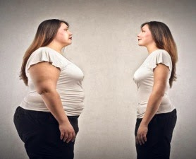 About Obesity, Fat