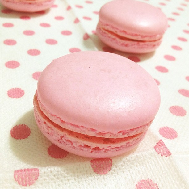 pink peach macarons rose - photo #7