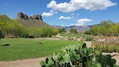 The Beauty of Arizona Golf